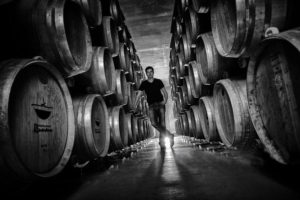 Weinbau Imagefotos